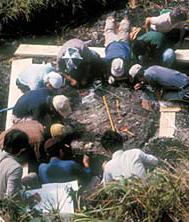 アショローアの発掘風景。川の水をせき止め、川底にへばりついて歯や骨のかけらを見落とさないよう掘る(写真提供:犬塚則久氏)