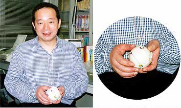 芳沢先生が開発した「マジックS10 」。ギザギザのレール部分を回転させることによって色の付いた突起を縦横に並べ替えていく玩具。子供はもちろん大人も楽しめる。ただし、残念ながら今のところ販売は未定だという