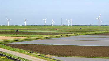 日本の風力発電の先駆的存在の山形県立川町の「立川ウィンドファーム」。計9基の風車が立ち並ぶ〈写真提供:野村卓史氏〉