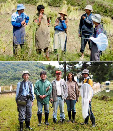 発光生物の採取のためフィールドワークに出掛ける近江谷氏と研究スタッフ。(上)中国雲南省、(下)ブラジルにて