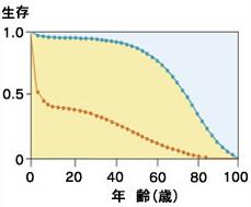 時空を隔てて比較したヒトの生存曲線<br>18世紀後半(1728-1736)のウィーン(下側の曲線)と、20世紀後半(1973)のアメリカ(上側の曲線)の年代に伴う生存率を比較。18世紀前半でも数は少ないが、100歳くらいまで長生きした人がいた