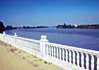 支倉らのスペイン上陸地点であるコリア・デル・リオの川沿いには、桜を植える計画が