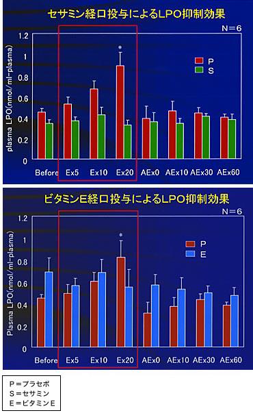 激しい運動を20分させ活性酸素を多くした状態をつくり、セサミン、プラセボ、ビタミンEを投与した場合で活性酸素の量を計測。明らかに、セサミンを摂取すると活性酸素を抑えられることが分る ※ 活性酸素は、体内ですぐ過酸化脂質(LPO)という物質に変化するため、実際にはLPOを計測した。※ 計測は、運動前と運動開始後5分、10分、20分後、さらに運動を止めた後も10分ごとに行なった※ 実験の2時間前に投与しているため、速効性の高いビタミンEは実験開始までに体内で作用して消失し、結果に現れていない(P=プラセボ、S=セサミン、E=ビタミンE)
