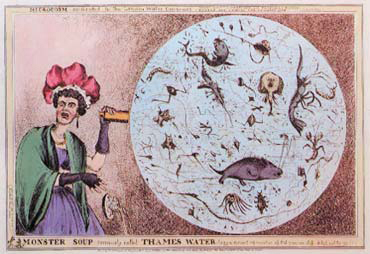 『「怪物スープ」の正体はこれだ!』(ウィリアム・ヒース画、1828年)。「怪物スープ」とは、当時汚染のひどかったテムズ川のこと(「LONDON-WORLD CITY 1800−1840」)