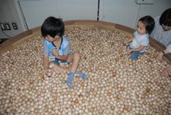 ヒノキのボールがいっぱいの「木の砂場」