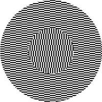 しばらく凝視していると、本来は動いていないにも関わらず、やがて中央の小さな円形の部分がより大きな円からなる背景の上でゆらゆら動いているように見えたり、小さな円と大きな円とがそれぞれ異なる動きをしているように見えたりする