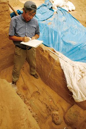研究は人骨資料の調査と発掘作業を基に、国内外で行なわれている。写真はペルーでの人骨の発掘現場