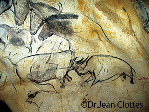 ショーヴェ洞窟の画像 p1_2